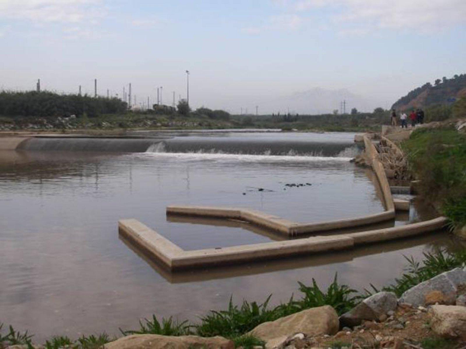 Pas de peixos al riu Llobregat, a Castellbisbal