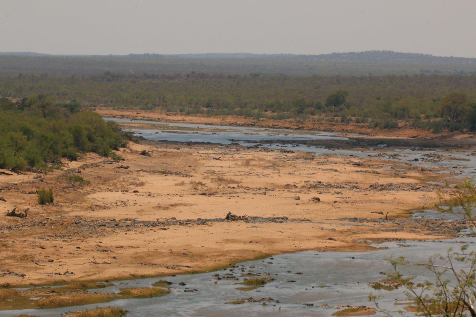 El riu Olifants del Parc Nacional Kruger (Sud-àfrica) durant un episodi de sequera