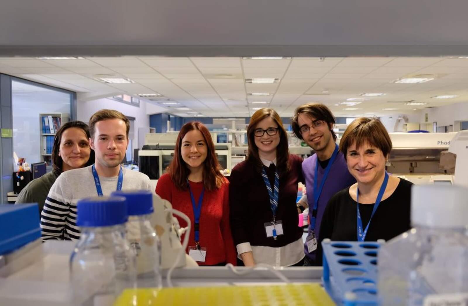 Fotografia conjunta del grup de recerca de l'IGTP que ha identificat un nou fàrmac per regenerar cèl·lules beta en la diabetis tipus 1