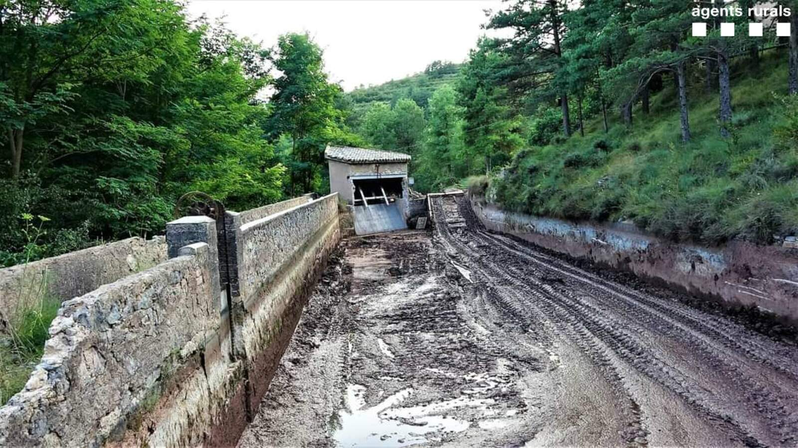 El canal es va assecar sense tenir en compte la fauna que en depèn