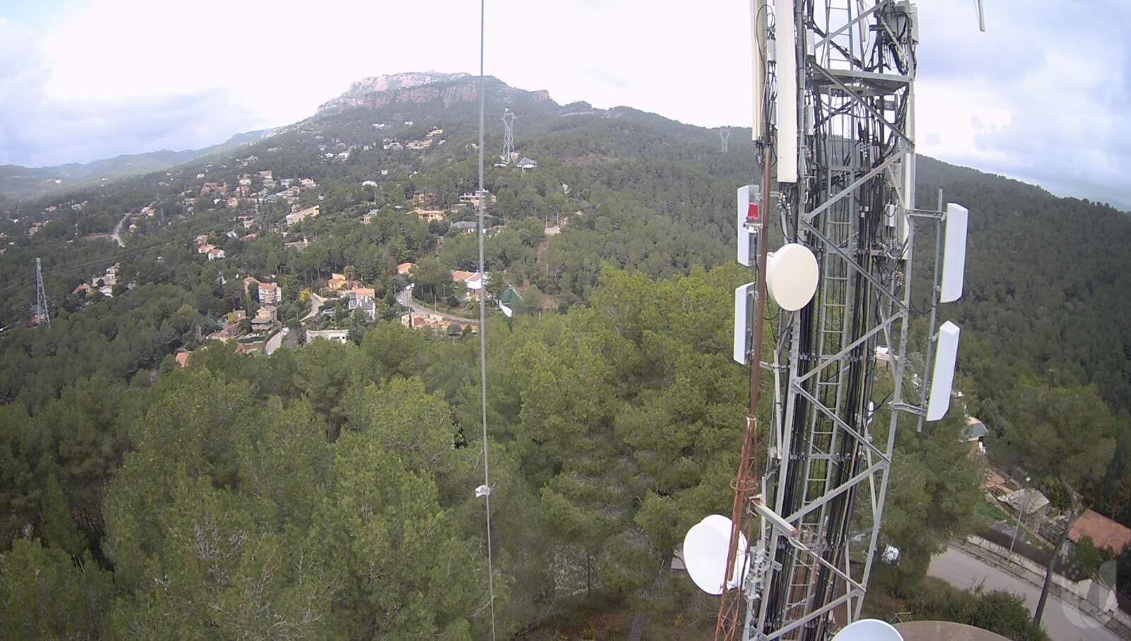 Imatge d'una de les càmeres situades al Parc Natural de Sant Llorenç