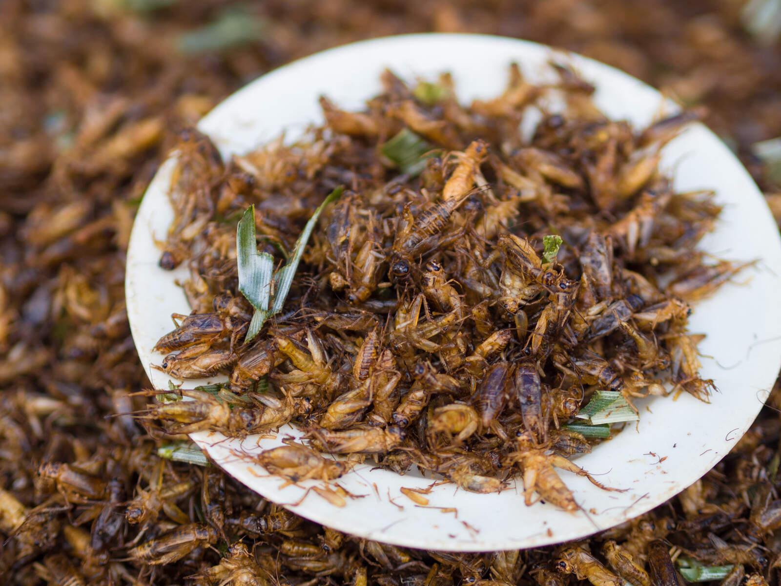 Un plat tradicional del sud-est asiàtic elaborat amb grills
