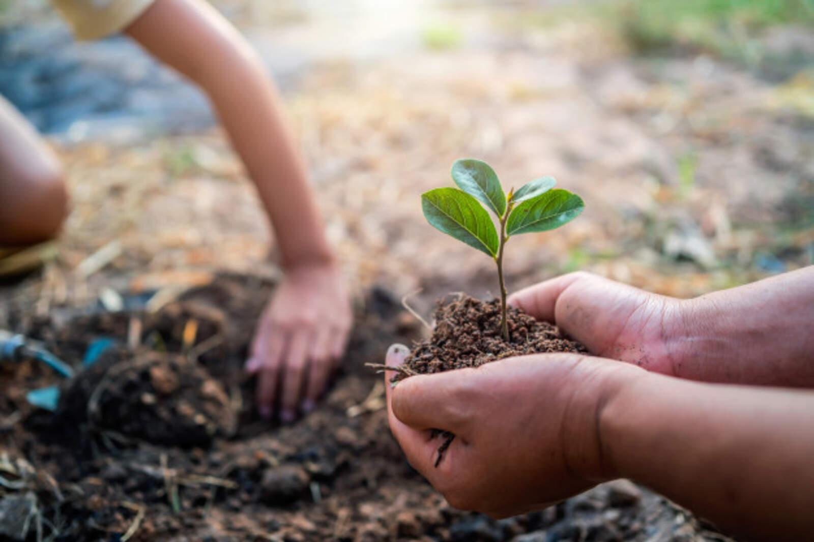 Nissan se suma a fer front als reptes ambientals per un planeta més sostenible