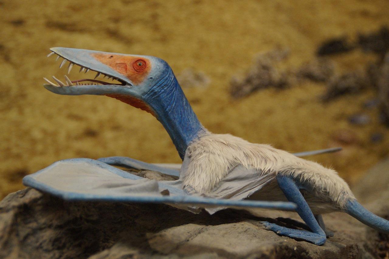 Pterosaure | Pixabay