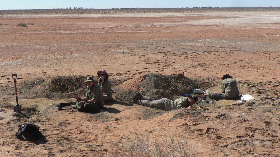 L'indret on han estat trobades les restes   Universitat Flinders